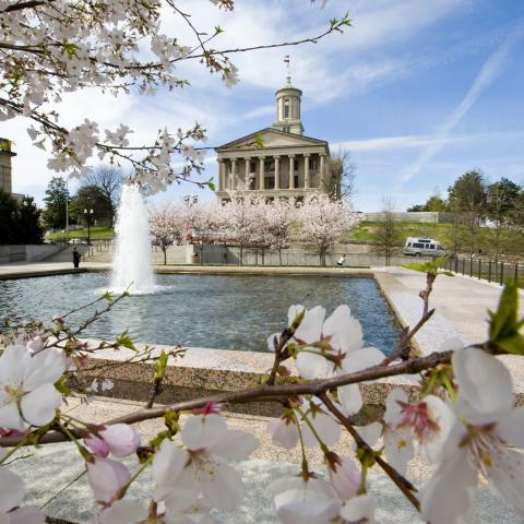 Tennessee State Capitol and blooming dogwood trees in Nashville TN